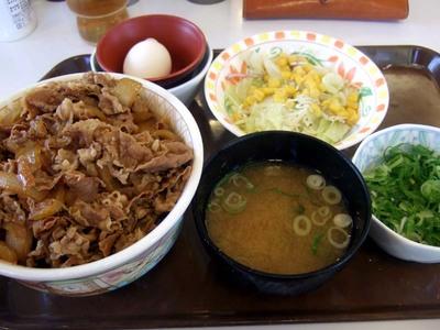 メガ牛丼 すき家